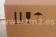 carton3.1